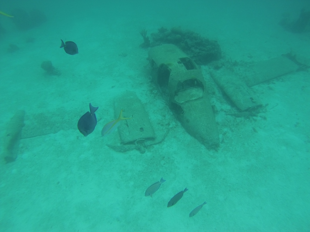 Sunken plane prop used for a James Bond movie.